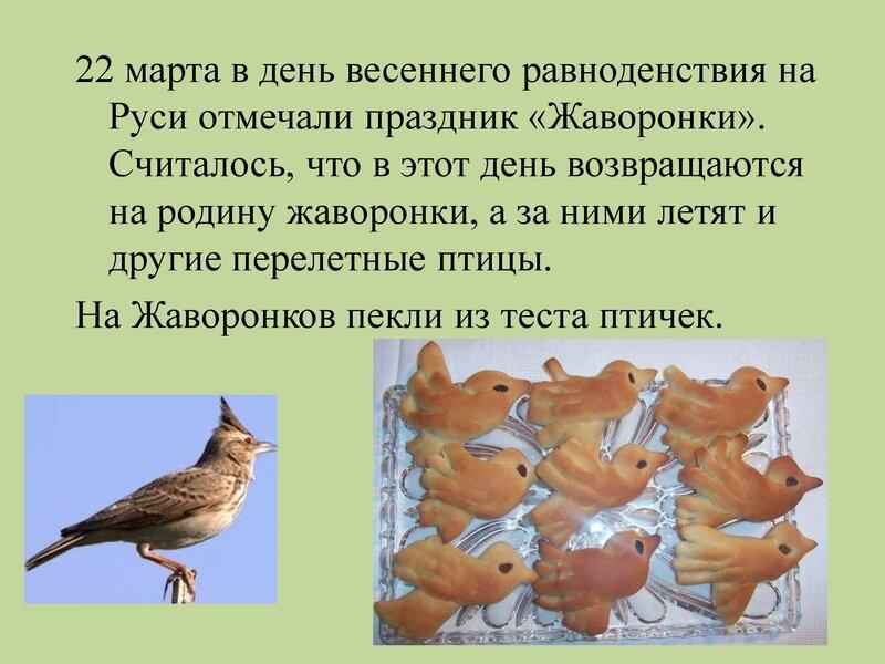 den-ptic_00008