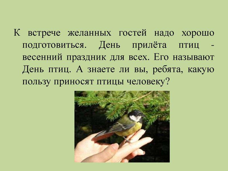 den-ptic_00013